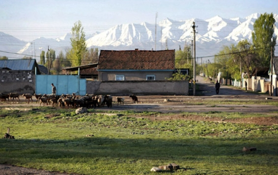 130422_FOR_KyrgyzTsarnaevHome.jpg.CROP.original-original_566_356_c1